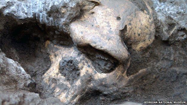 dmanisi georgia human fossil