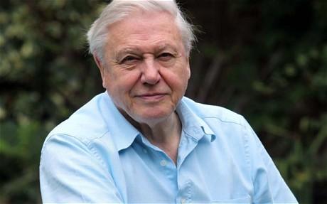 1037280e / Sir David Attenborough