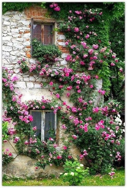 Çiçekler ve mimari