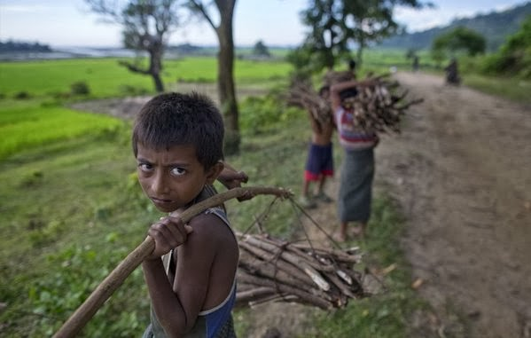 Muslim children in Myanmar's Rakhine state are seen carrying bundles of sticks collected from a forest to sell as firewood. (Gemunu Amarasinghe / Associated Press)  http://www.latimes.com/opinion/editorials/la-ed-rohingya-20140309,0,7735660.story#ixzz2wIfGClJx